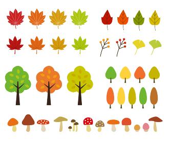 秋の植物・紅葉のイラストセット