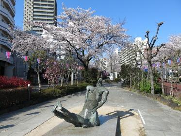 文京さくらまつり開催期間の播磨坂さくら並木(千川通り側の緑道と彫刻作品)