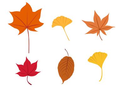 イラスト素材 紅葉 もみじ 秋 葉 セット パターン 和風 テクスチャ― ベクター