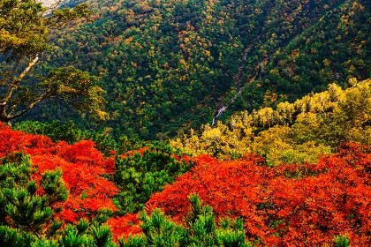 あまりょうの滝 展望台 北海道 層雲峡黒岳