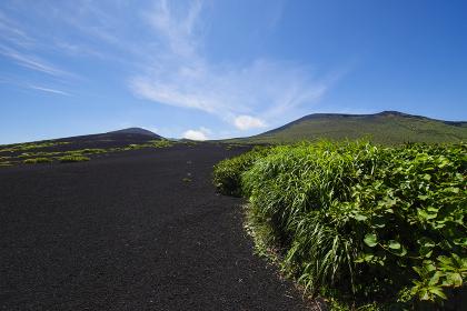 奇岩が連なる伊豆大島のジオパーク