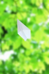 紙飛行機と新緑