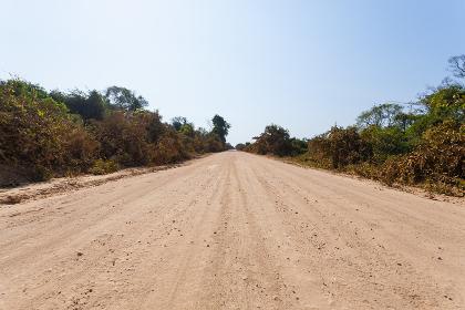 Brazilian dirt road in perspective
