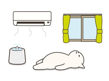 エアコンの付いた部屋で仰向けで寝ている猫 熱中症対策 給水器