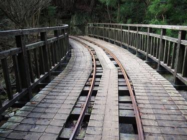 今は動いていない森林鉄道の跡をたどると、縄文杉に至る