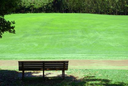 ベンチと広い芝生のある公園の風景