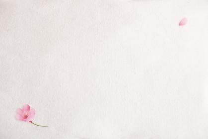 桜の花のある生成りの白い布背景素材