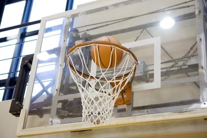体育館イメージ