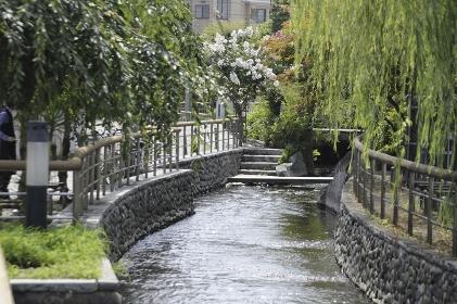 宇都宮市内の川
