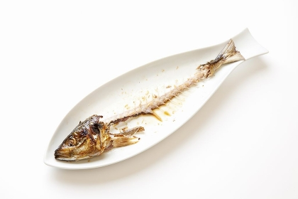 奇麗に食された魚