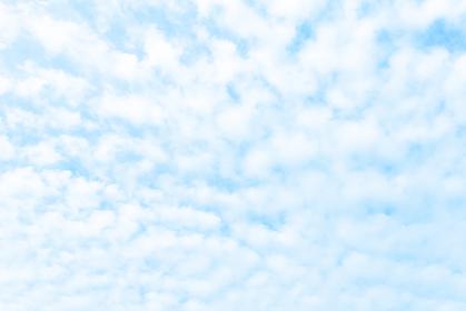 青空と雲 高積雲 3507