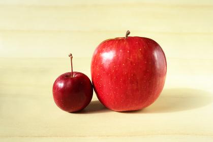 並んだリンゴと姫リンゴ 4