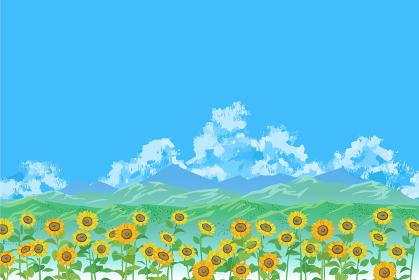 ひまわりの列ごしに見える山並みと夏空のベクターイラスト