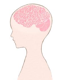 人間と脳みそのイラスト 横向きの人の脳内シルエット
