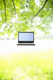 夏の日差しを浴びる草木とノートパソコン