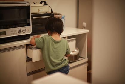 食器棚を開く男の子