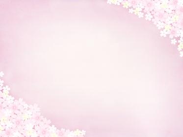 満開の桜と優しいピンクの和風背景 華やかなピンクのサクラ