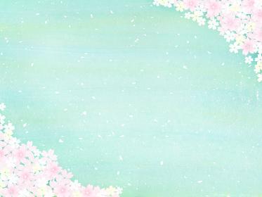 新緑とピンクの桜吹雪 華やかな春の風景