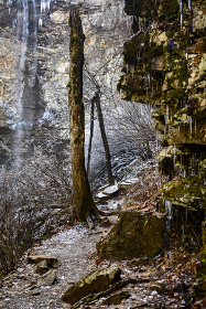 Ice coated shrubery and and rocks near a waterfall in a forest.