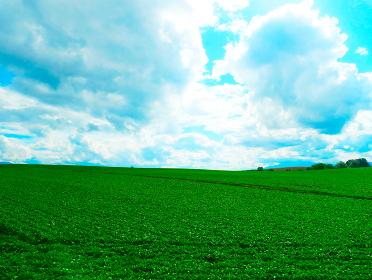 秋の田舎の風景