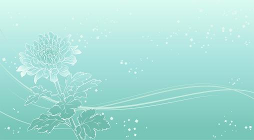上品な菊の花の背景イラスト(薄緑)
