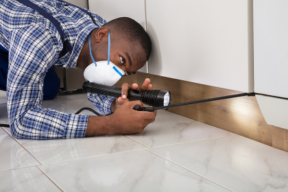 Worker With Mask Kneeling On Floor And Spraying Pesticide