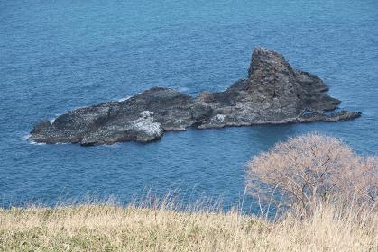 小樽市高島岬から見るトド岩