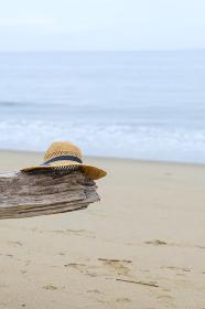 海と流木と麦わら帽子