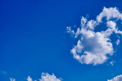 青空に浮かぶ白い積雲