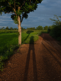 My shadow on the ground  in nature