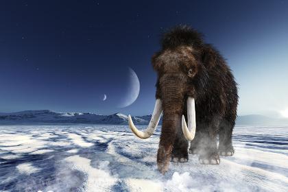 月が見える氷の大地を山を背に歩き進むマンモス