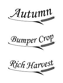 秋にまつわる文字と麦のシンボル set