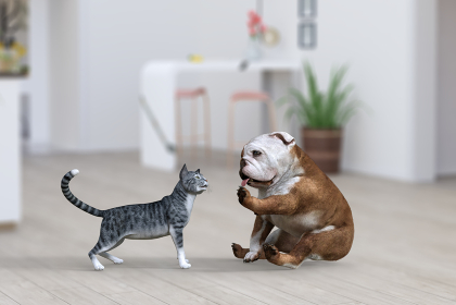 可愛くおすわりしたブルドッグが近づいてきた猫と挨拶をする