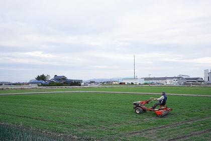 農業・トラクターに乗る人物