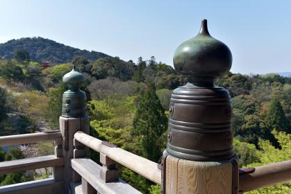 清水寺 本堂舞台から東山を望む 京都市