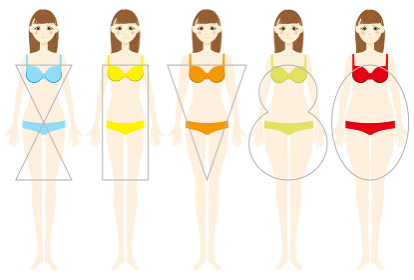 女性の体型