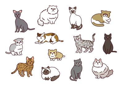 かわいくてシンプルな13種類の猫たちのイラストセット