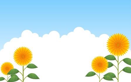 青空を背景にした向日葵と入道雲