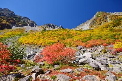 涸沢カールの紅葉と穂高連峰