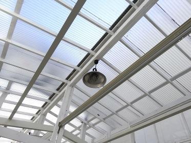 採光用のビニールトタン屋根