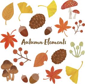 秋 もみじ きのこ イチョウ ドングリ 松ぼっくり 葉っぱ イラスト セット