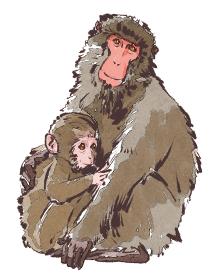 申 猿 さる 親子