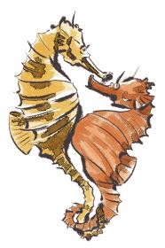 辰 たつのおとしご タツノオトシゴ  竜の落とし子 干支 十二支