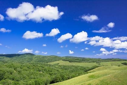 北海道 女満別の田園風景