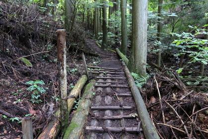 登山道の木製の橋 (の上を歩く)