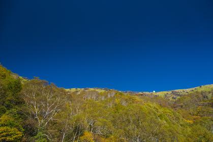 快晴の車山高原