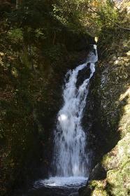 髭僧の滝の紅葉