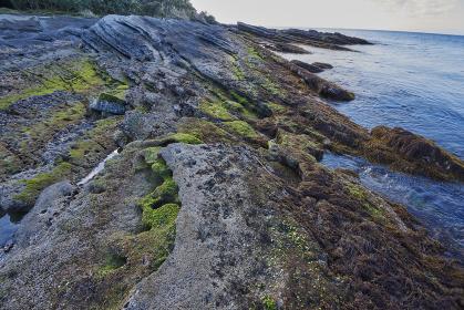 波の浸食を受けた海岸の岩場