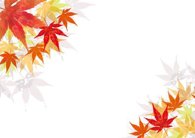 紅葉 楓 秋色のオーナメント 秋のイメージ 葉っぱのオーナメント バックグラウンド