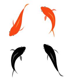 金魚 アイコンセット